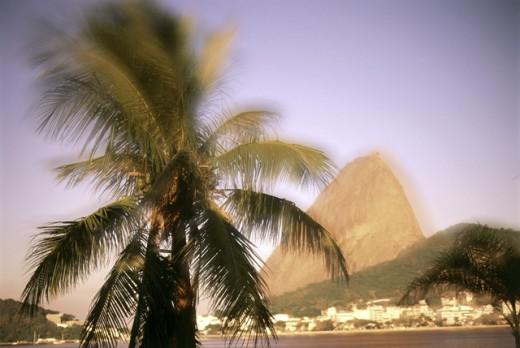 Sugar Loaf Mountain  Rio de Janeiro Brazil : Stock Photo