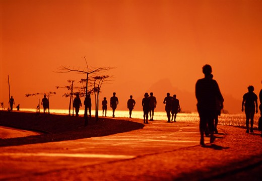 Silhouette of a group of people walking in a park, Flamengo Park, Rio de Janeiro, Brazil : Stock Photo