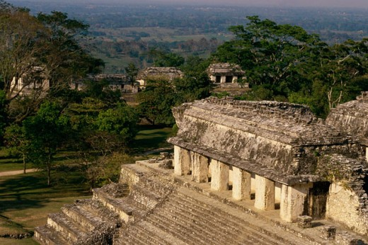 Stock Photo: 1344-1065 High angle view of the old ruins of a palace, Palenque (Mayan), Chiapas, Mexico