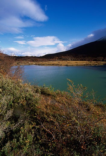 High angle view of a pond, Tierra del Fuego National Park, Tierra del Fuego, Argentina : Stock Photo