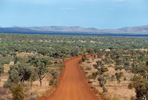 Dirt road passing through a landscape, Karijini National Park, Western Australia, Australia : Stock Photo