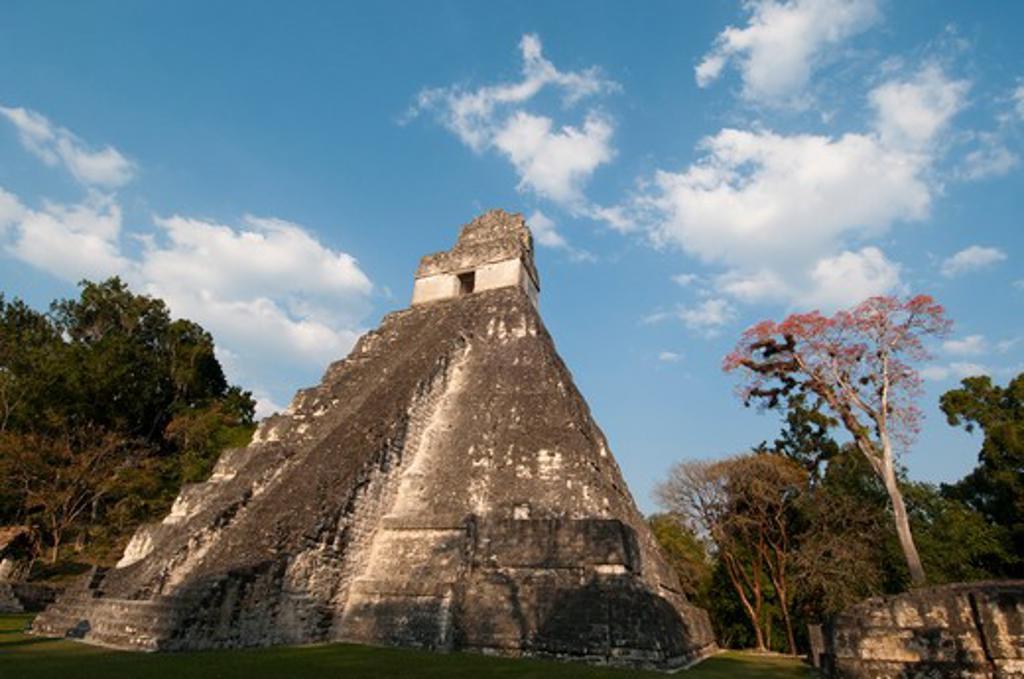 Low angle view of a temple, Tikal Temple I, Tikal National Park, Tikal, Guatemala : Stock Photo