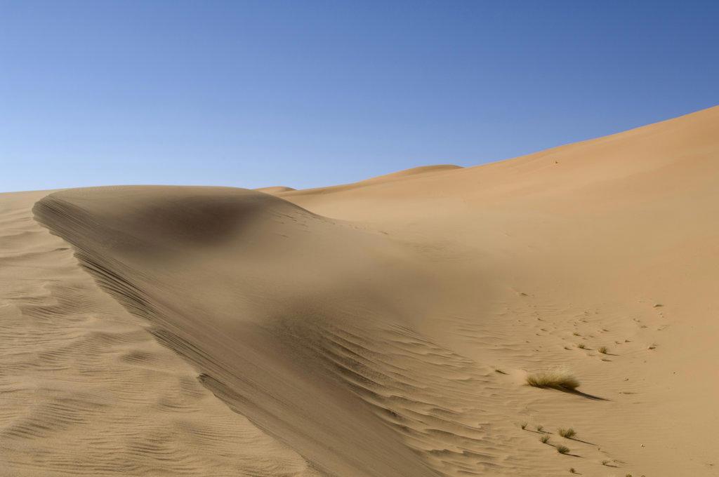 Sand dunes in a desert, Tadrart Acacus, Fezzan, Libya : Stock Photo