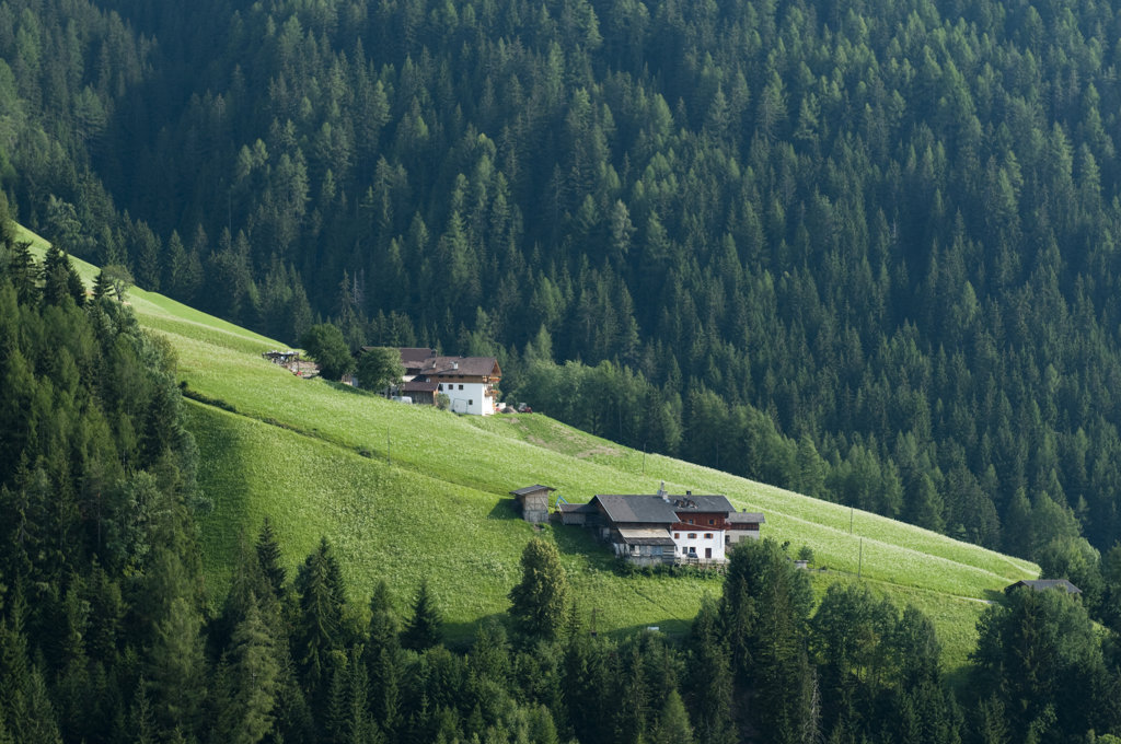 Houses on a landscape, Santa Maddalena, Funes Valley, Dolomites, Trentino-Alto-Adige, Italy : Stock Photo