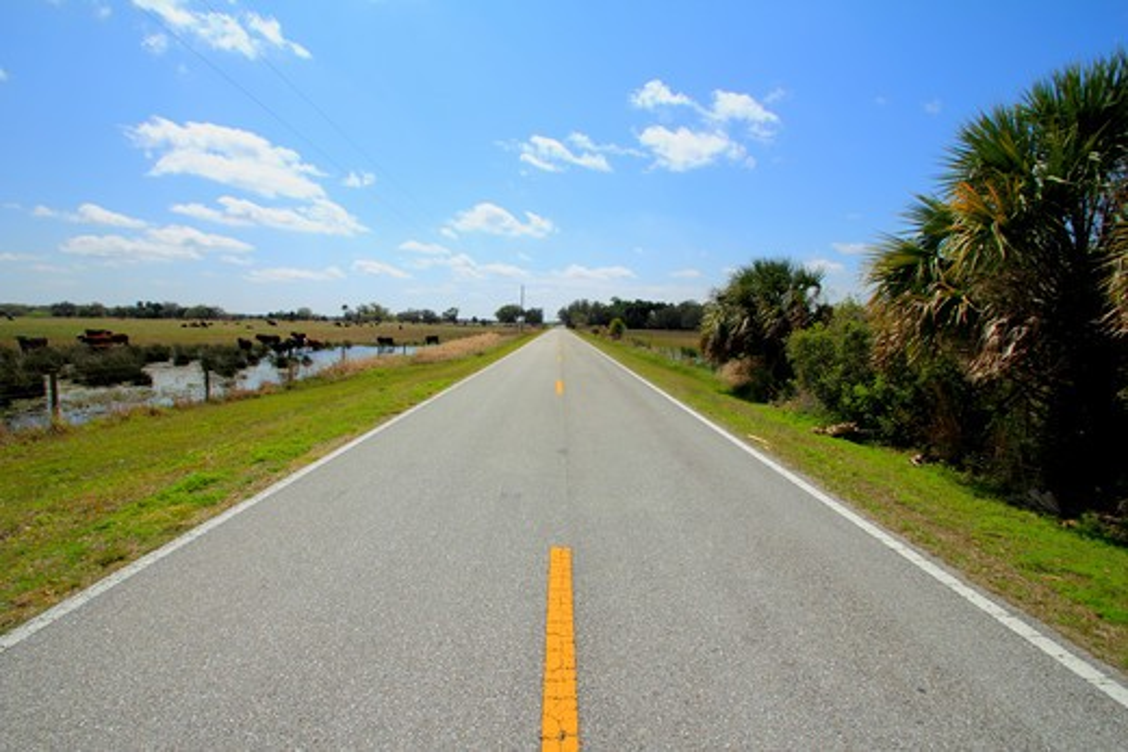 Highway passing through a landscape, Florida State Road 780, Sarasota County, Florida, USA : Stock Photo