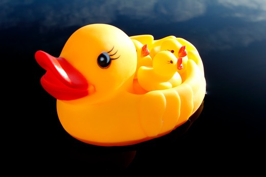 Rubber duck floating on water : Stock Photo