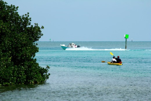 Stock Photo: 1346-1363 Tourists boating in the bay, Everglades National Park, Florida, USA