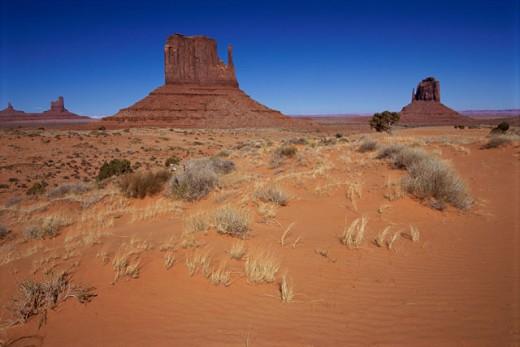 Panoramic view of desert land, Mittens Buttes, Monument Valley, Arizona, USA : Stock Photo