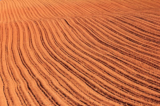 Stock Photo: 1346-999 High angle view of a plowed field