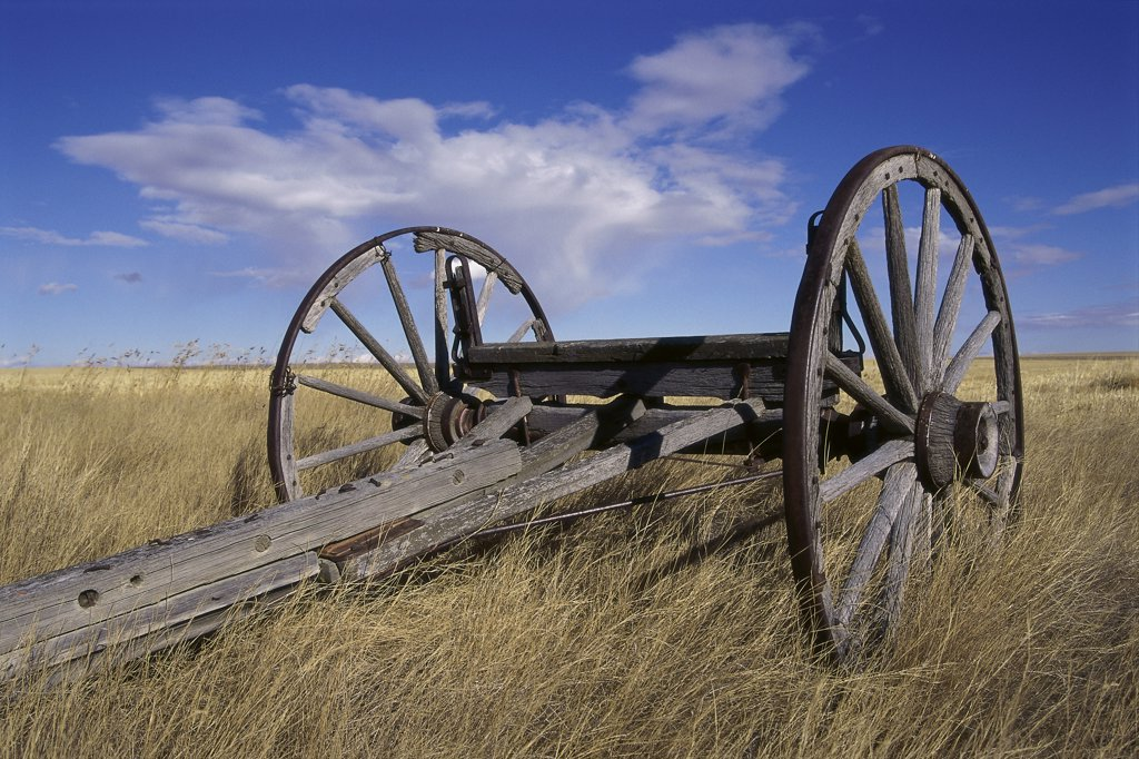 Stock Photo: 1346R-459 Low angle view of an old fashioned wagon, Alberta, Canada