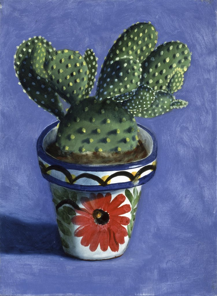 Stock Photo: 1347-234 Cactus
