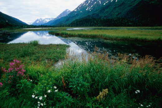 Stock Photo: 1363-109 Alaska