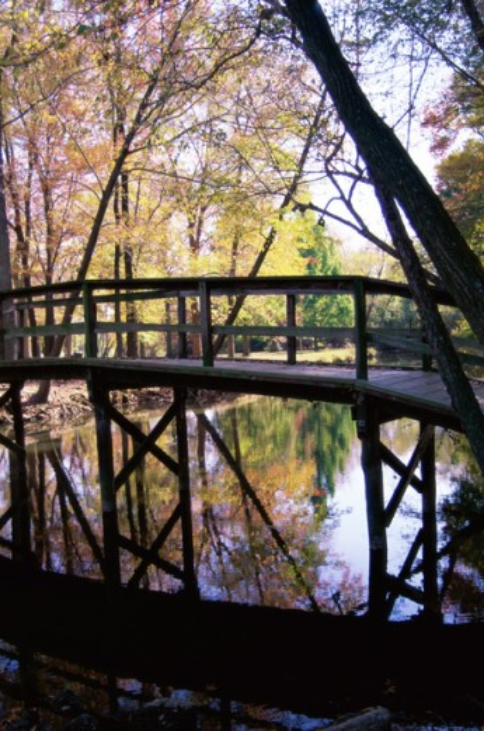 Stock Photo: 1365R-168A Footbridge at Silver Lake Park, Dover, Delaware, USA