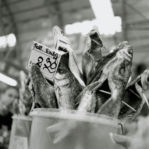 Close-up of dried fish with a price tag in a container : Stock Photo
