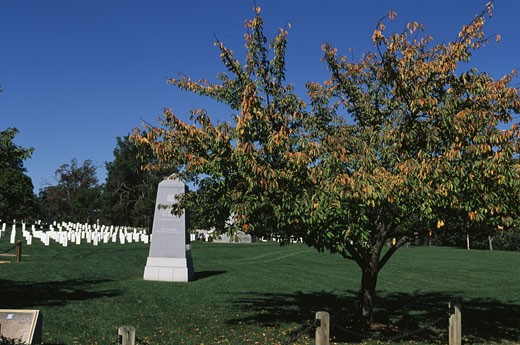 Monument in a cemetery, 23rd Infantry Division Monument, Arlington National Cemetery, Arlington, Virginia, USA : Stock Photo