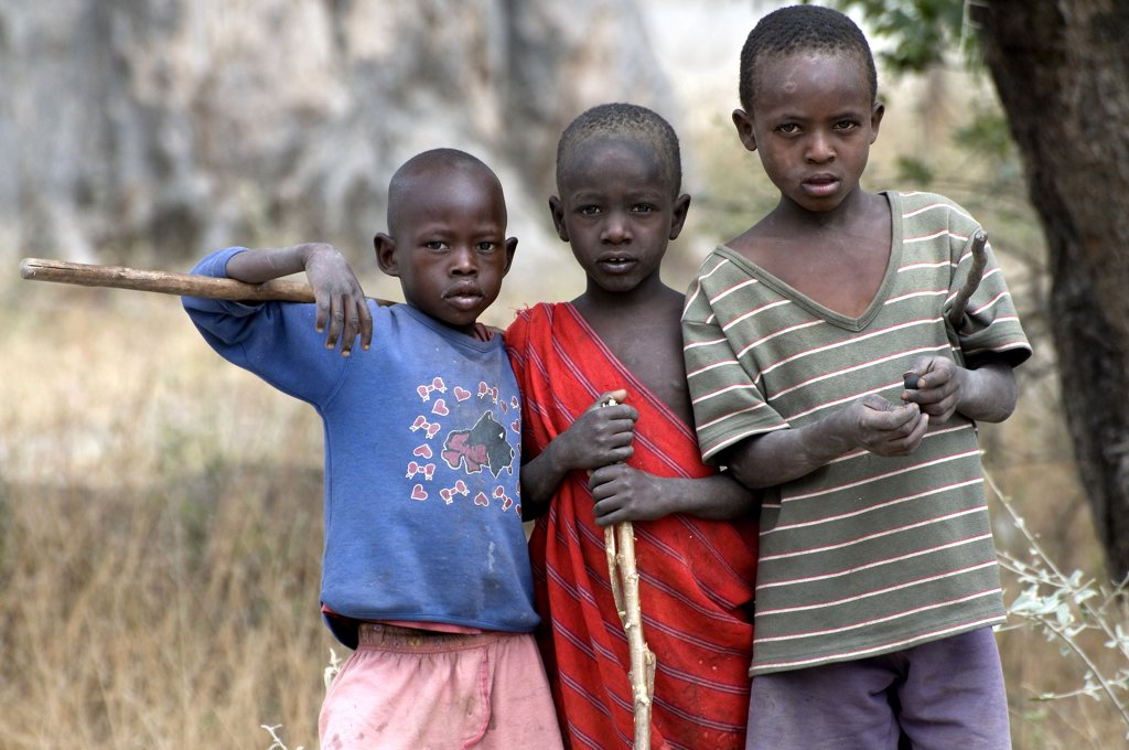 Masai children in a forest, Tarangire National Park, Arusha Region, Tanzania : Stock Photo