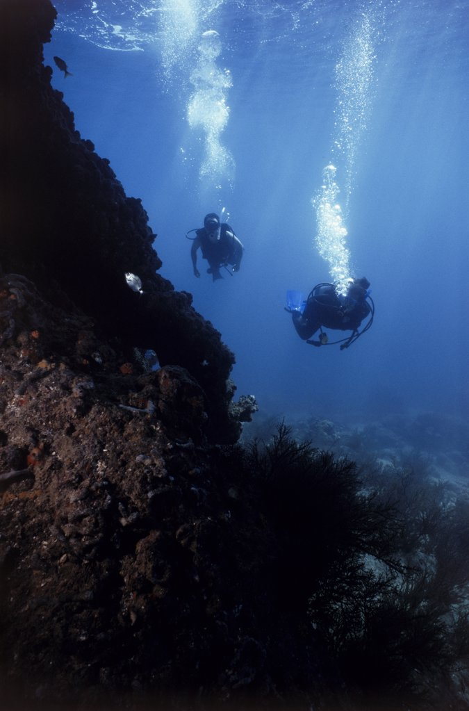 Two scuba divers underwater near a reef : Stock Photo