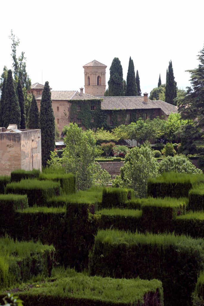 Stock Photo: 1380-788 Formal garden in front of a palace, Alhambra, Granada, Andalusia, Spain