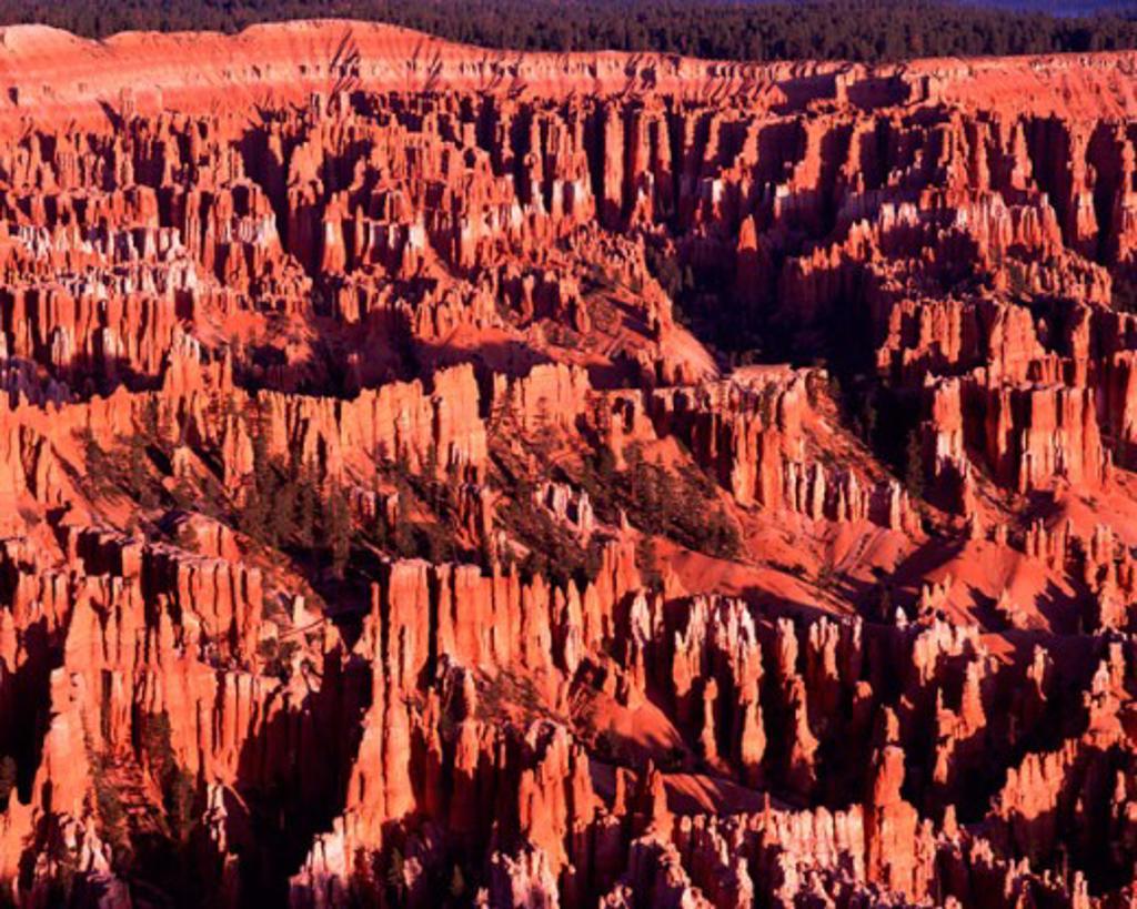 Bryce Canyon National Park  Utah USA : Stock Photo