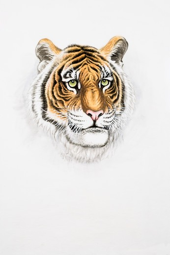 Chinese Fine art, Traditional Chinese Painting, Year Of The Tiger : Stock Photo