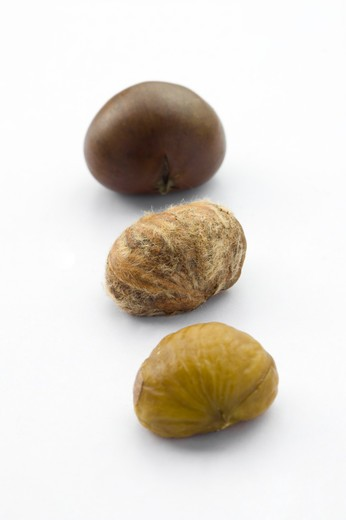 Close-up of three chestnuts in a row : Stock Photo