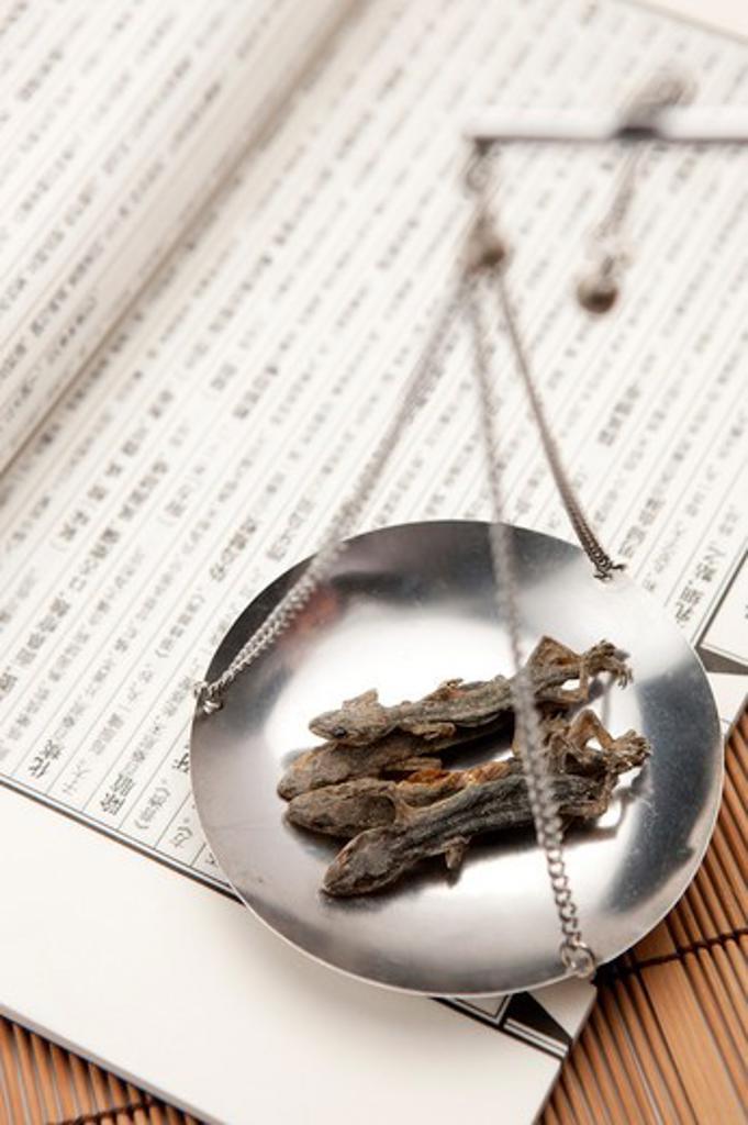 Stock Photo: 1397R-70399 Chinese Herbal Medicine