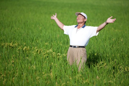 Elderly farmer taking deep breath in rice field : Stock Photo