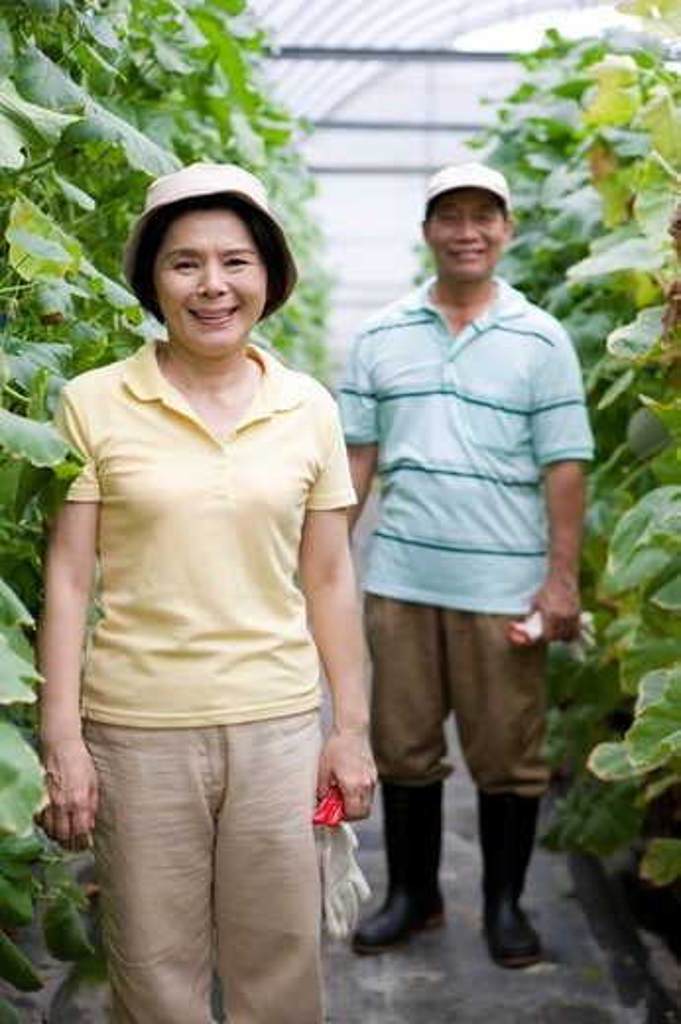 Stock Photo: 1397R-70537 Farmer couple in greenhouse