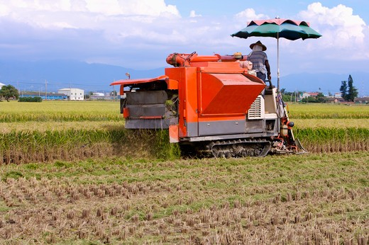 Stock Photo: 1397R-70718 Rice, Modern Agriculture