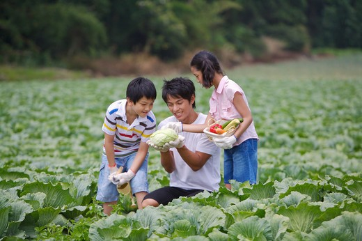Stock Photo: 1397R-70791 Young man with two children crouching in the vegetable garden and smiling happily
