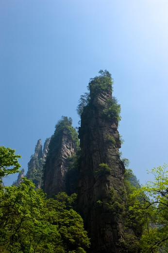 Wenxing Rock, Zhangjiajie, Hunan Province, China, Asia : Stock Photo