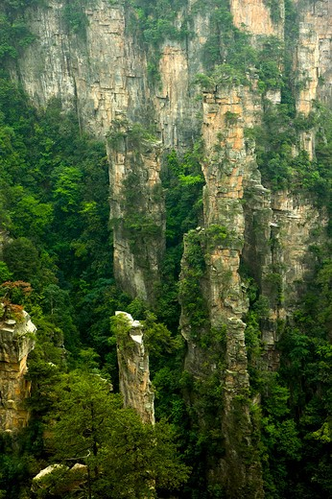 Mt Tianzi, Shentang Gulf, Zhangjiajie, Hunan Province, China, Asia : Stock Photo