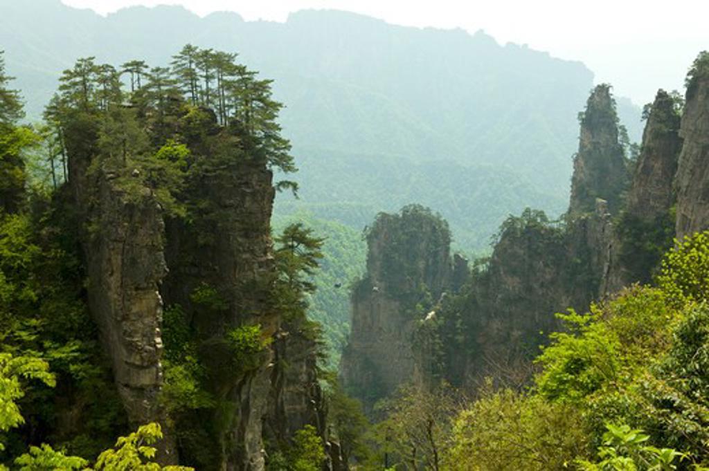 Mt Tianzi, Zhangjiajie, Hunan Province, China, Asia : Stock Photo