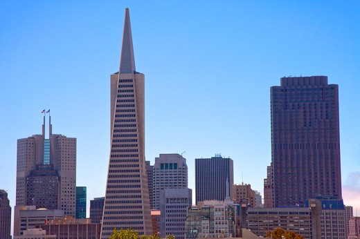 Stock Photo: 1397R-74797 Transamerica Pyramid, San Francisco, California, USA, North America