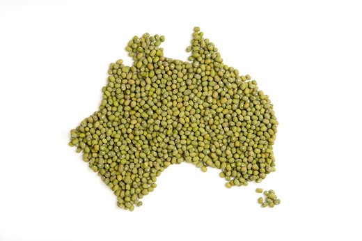 Map of Australia made of Green Beans : Stock Photo