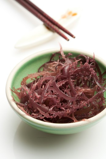 Stock Photo: 1397R-76565 Seaweed