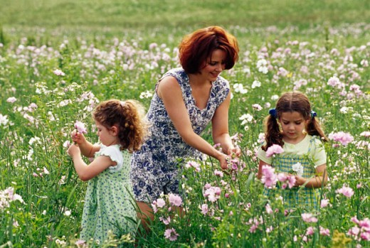 Stock Photo: 1406-306 Mother with her two daughters picking flowers in a field