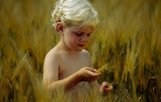 Stock Photo: 1406-326A Close-up of a boy looking at a barley of wheat