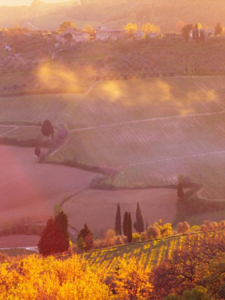 Stock Photo: 1408-131 Tuscany Italy