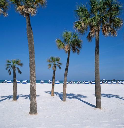 Stock Photo: 1417-174 Clearwater