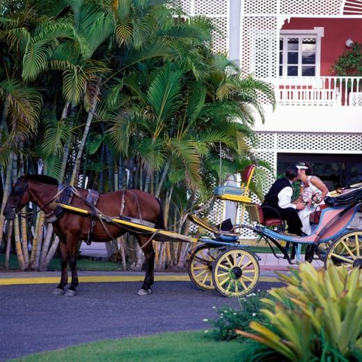 Dominican Republic     : Stock Photo