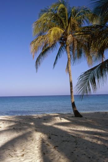 Stock Photo: 1424R-265 Maria La Gorda Beach Cuba