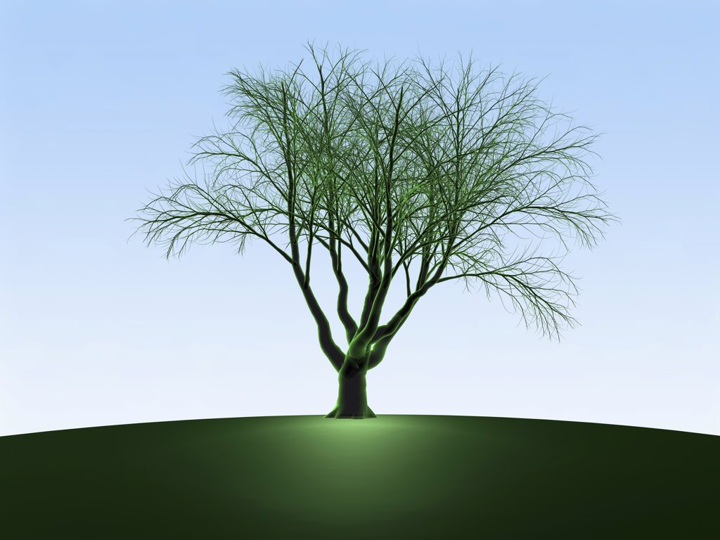 Green Oak Tree, Digitally Generated Image by Hank Grebe : Stock Photo