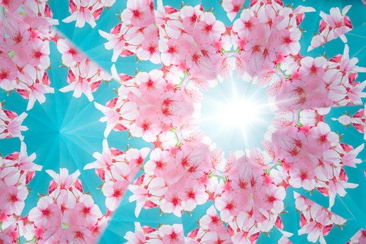 Stock Photo: 143R-7869 Kaleidoscope
