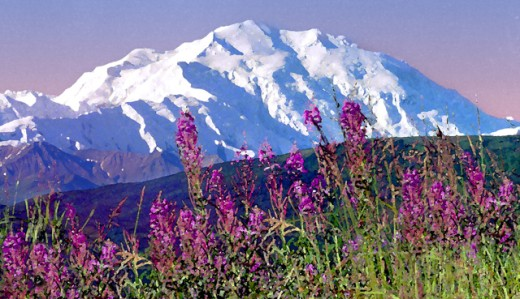 Stock Photo: 1432-119 Mount McKinley