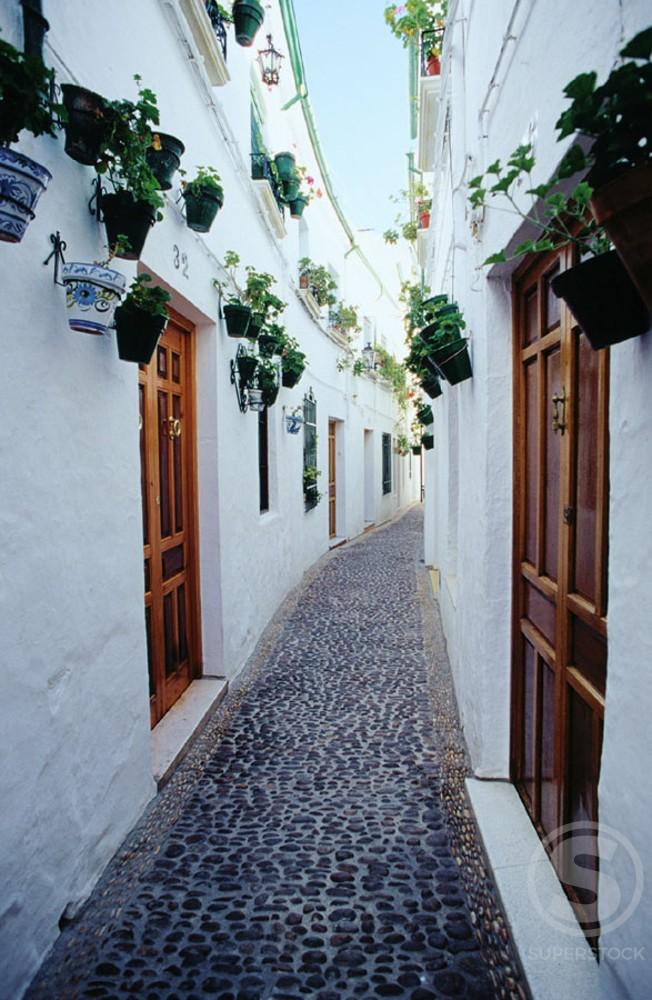 Priego de Cordoba Spain : Stock Photo