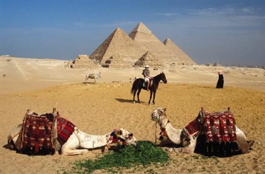 Giza Egypt : Stock Photo