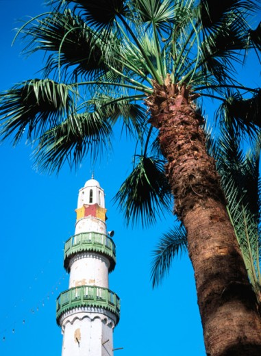 Stock Photo: 1436R-16100 Luxor Egypt