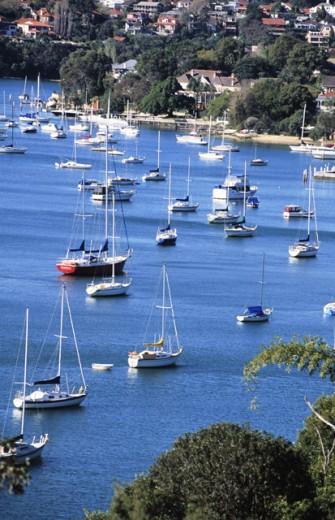 Sydney Australia : Stock Photo