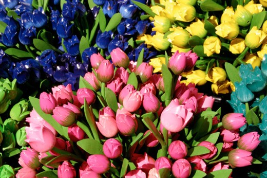 Stock Photo: 1436R-197098 Wooden Tulips